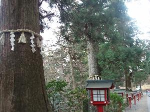 2006031 takao5.jpg
