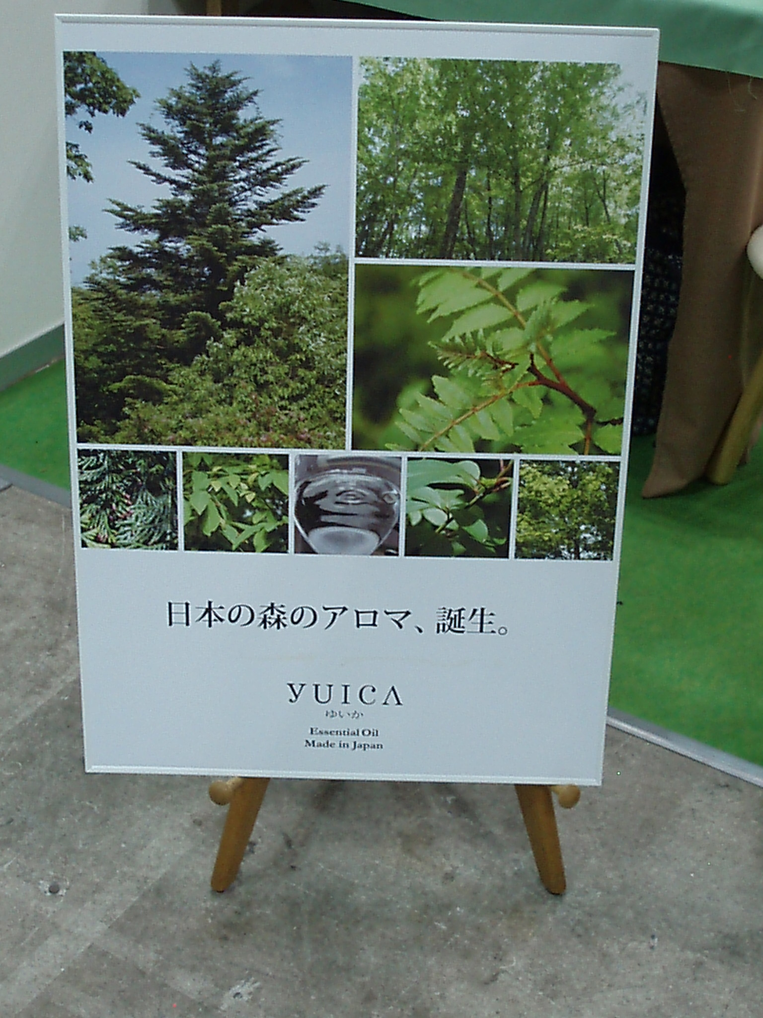 yuica2.JPG